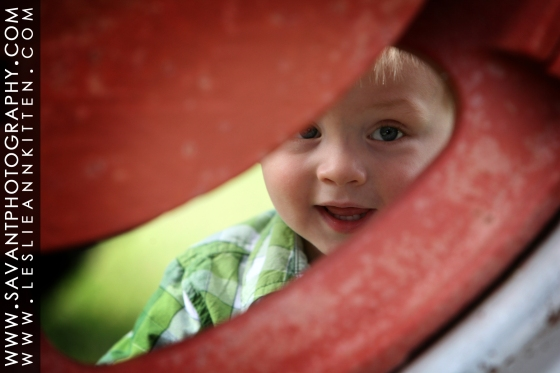 Mason Kitten 2 Year Portraits